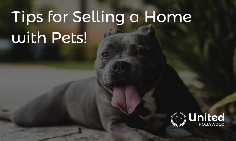 selling homes with pets